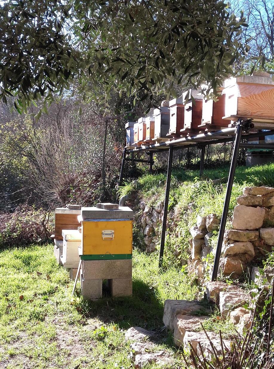 apiculteur cote d azur miel bar sur loup