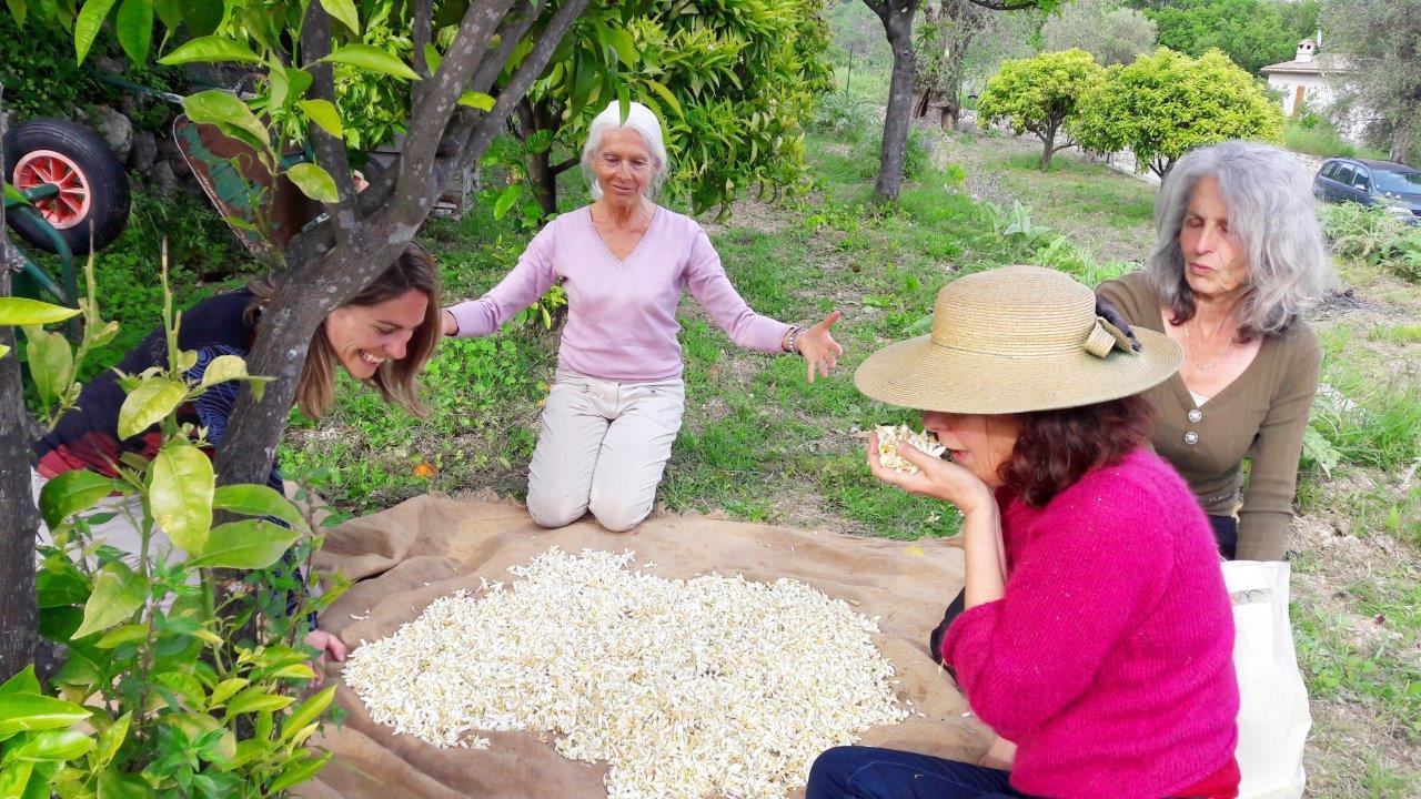 vacances cote d azur locations louer agritourisme agrotourisme gites fleurs parfums partenaire