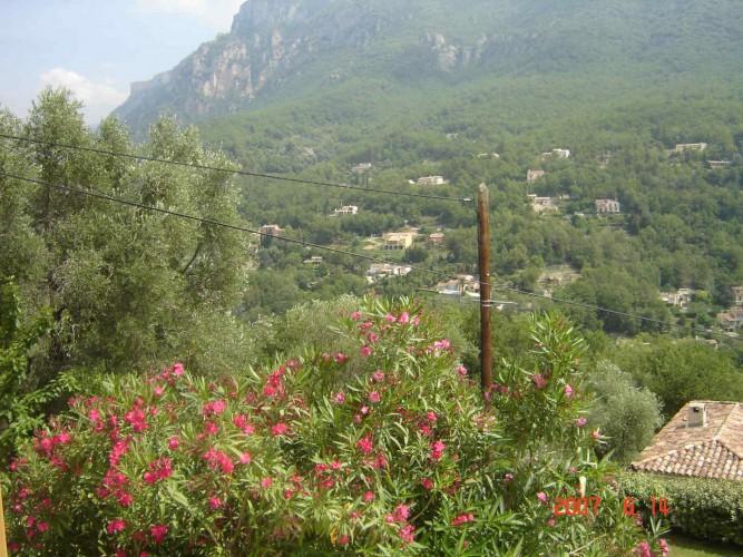 louer villa 4 pieces f4 alpes maritimes 06 cannes nice antibes sophia antipolis grasse odon