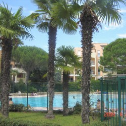 locations appartements studio vacances piscine cannes gites france 06 alpes maritimes cote d azur paradisier