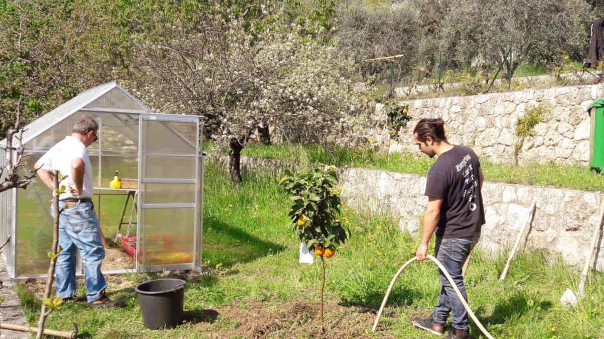 orangers bigaradiers jardin parfums grasse vacances cote d azur blog