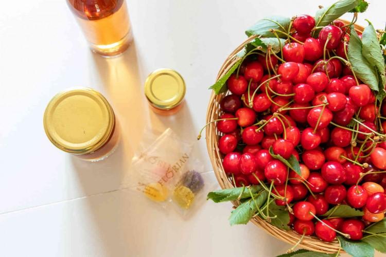 sejourner gites provence alpes cote d azur vacances agritourisme nb