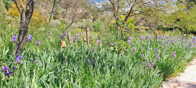 jardins musee parfumerie grasse cote d azur visiter decouvrir blog