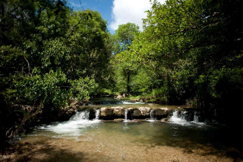 parc brague biot balade nature blog